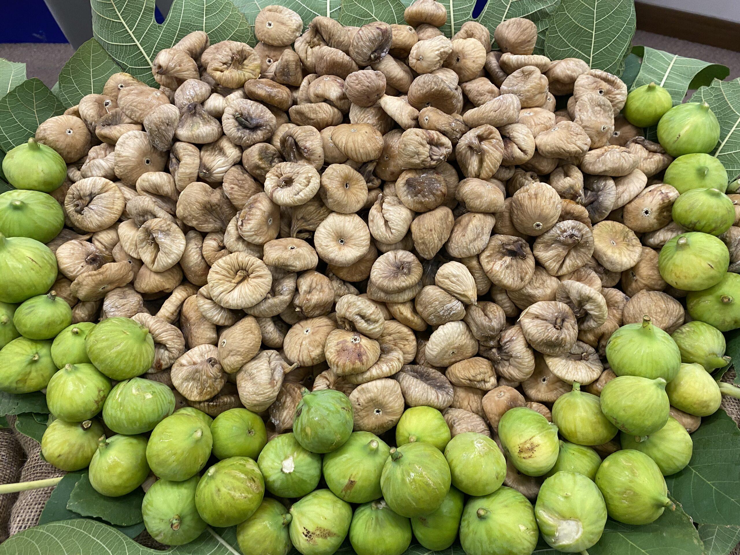 Kuru incir ihracatında 256 milyon dolar döviz geliri elde edildi